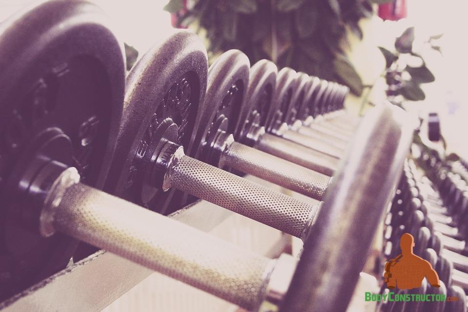 training, weight